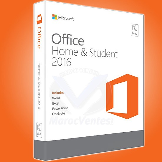 MS Office Home and Student 79G-04602